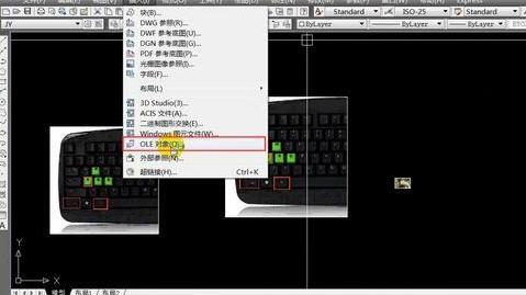 CAD出图 CAD1001个技巧 CAD图片插入的运用