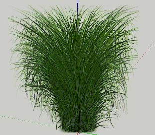 园林植物2d草丛SketchUp模型图