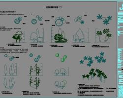 居住区景观植物CAD施工图