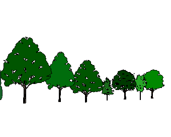 手绘植物sketchup模型