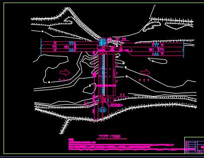 枢纽泄水闸工程设计图纸