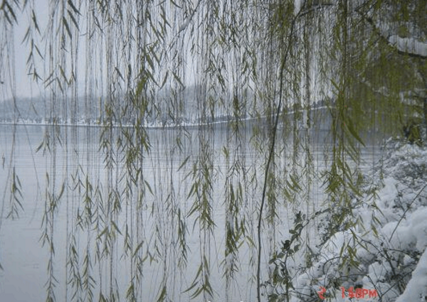 中国古代园林景观的审美特点