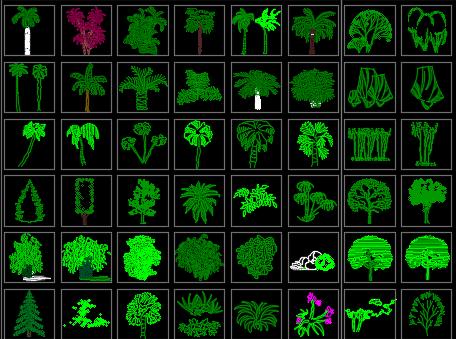 CAD园林植物图库
