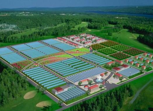 休闲观光农业中心基础设施工程施工组织设计