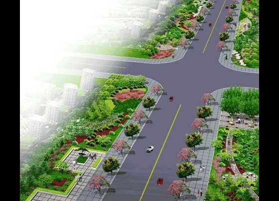 城市道路绿化带效果图