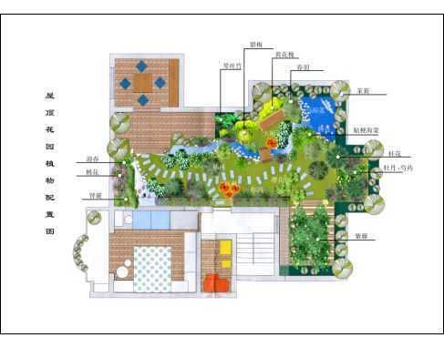 屋顶花园植物配置彩平图纸免费下载 - 园林景观效果图