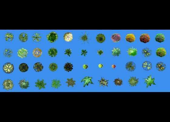 景观平面图例免费下载 - 园林景观素材 - 土木工程网