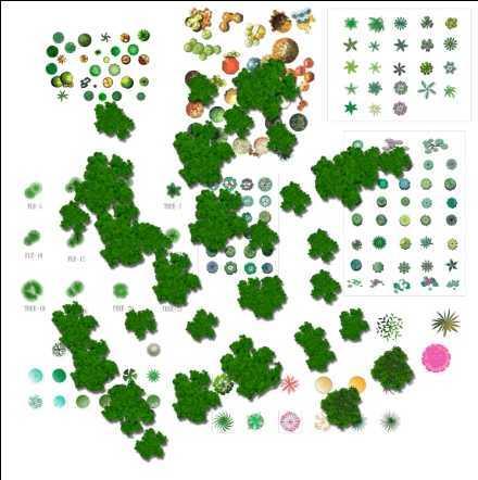 园林树木平面集合psd免费下载 - 园林景观素材 - 土木
