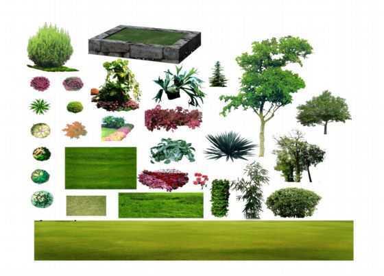 ps后期处理-植物篇免费下载 - 园林景观素材 - 土木