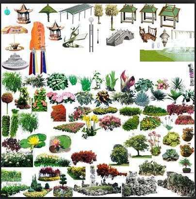ps植物平面圖例集合免費下載 - 園林景觀素材 - 土木