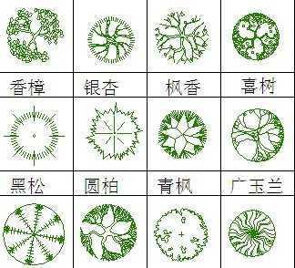 园林植物平面图例免费下载 - 园林景观素材 - 土木