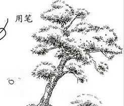 景观学习单体线稿免费下载 - 园林景观素材 - 土木图片