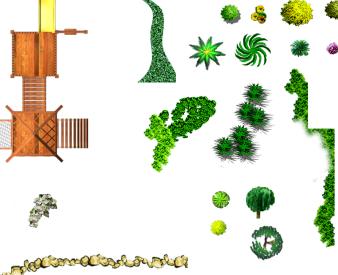 园林景观植物ps素材