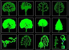 植物设计CAD图例