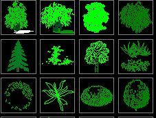 cad园林植物立面图库