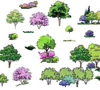 29种园林手绘树木立面PSD素材源文件