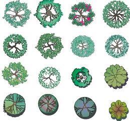 28个园林水彩植物平面PSD素材源文件