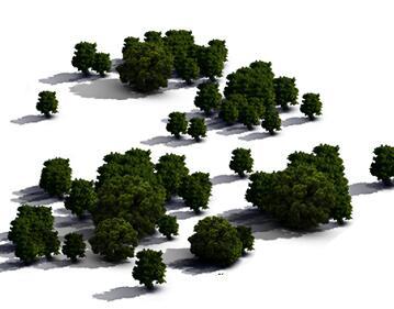 园林树木鸟瞰PSD素材源文件