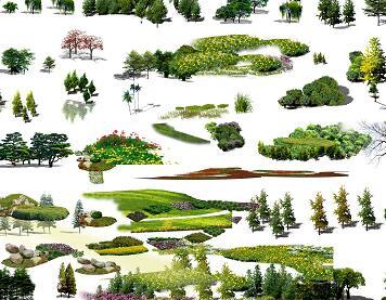 84种园林植物鸟瞰PSD素材源文件