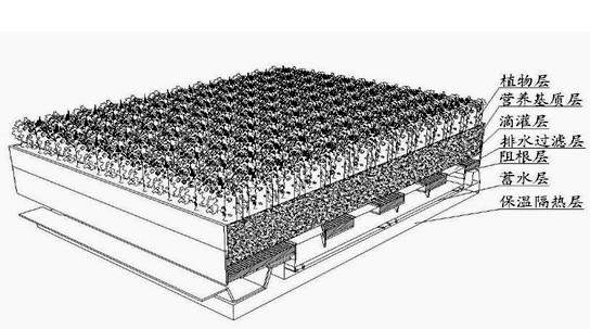 种植屋面设计基本构造层次有哪些?