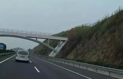 公路工程高边坡支护施工措施要点